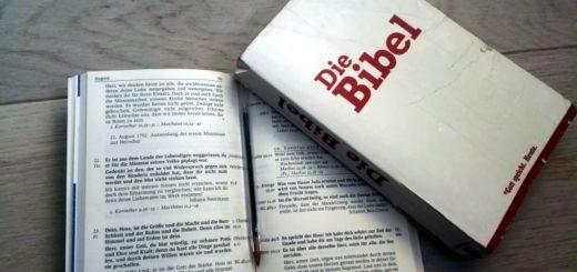 Die Bibel mit den Losungen lesen